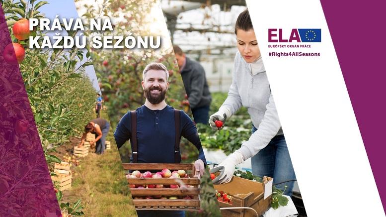 Banner - Európsky týždeň pre sezónnych pracovníkov (ELA - Európsky orgán práce)